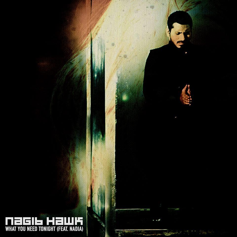 Nagib Hawk